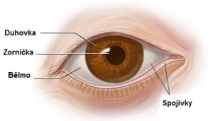 Smáčivost kontaktní čočky.